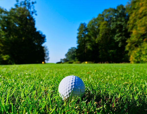 An image of a white golf ball sitting on green grass with trees in the background